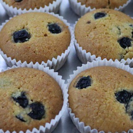 Blueberry Delight Muffins (Gluten-free)